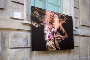 exposition-hotel-sully-sein-et-sauf-agnes-colombo-2