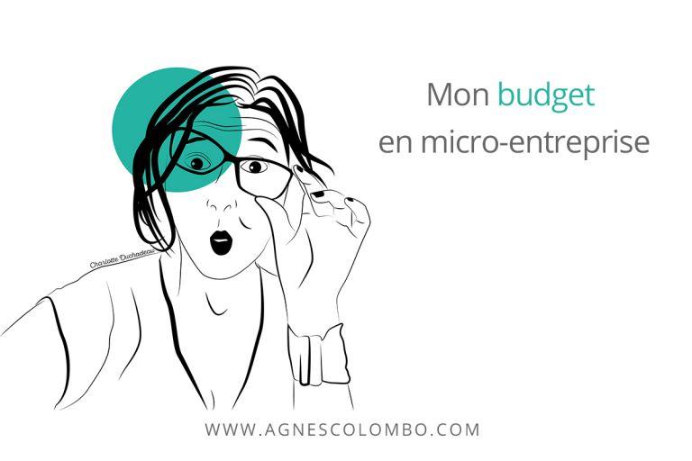 Mon budget en micro-entreprise