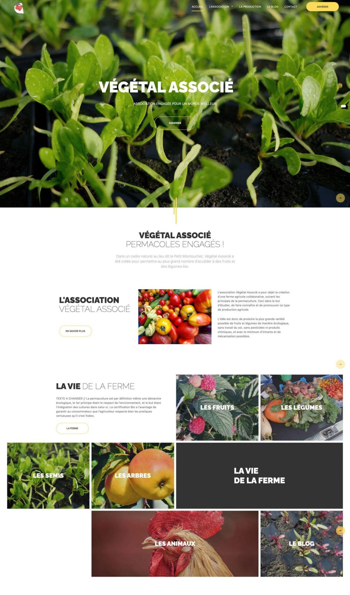 vegetalassocie-associationpermacole